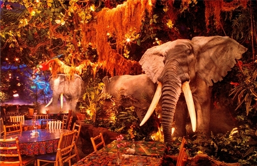 The Rainforest Cafe is just one of the many restaurants and retailers that uses music and other elements to influence consumer habits. Courtesy image