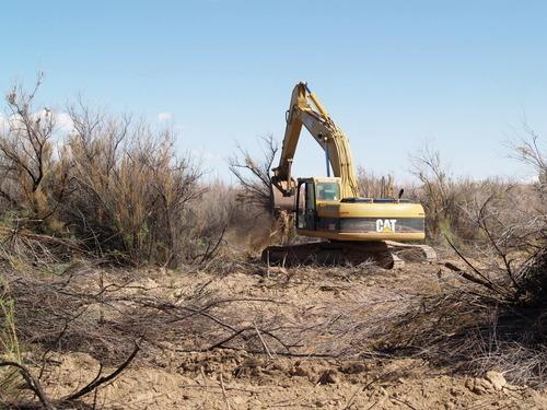 Courtesy Division of Wildlife Resources Excavators removing tamarisk from banks of San Rafael River in effort to restore native habitat.