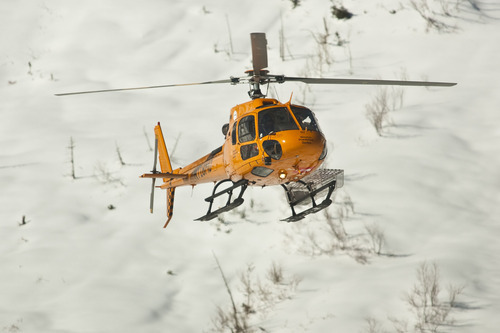 Chris Detrick  |  The Salt Lake Tribune A Wasatch Powderbird helicopter flies in Little Cottonwood Canyon Saturday January 28, 2012. One person died in an avalanche in the backcountry between Big and Little Cottonwood canyons late Saturday morning. Unified Police Department Lt. Justin Hoyal said a group of three people were skiing on Kessler Ridge, an area that drops down into Mineral Fork Canyon in Big Cottonwood Canyon, when the avalanche was triggered at about 11:30 a.m.