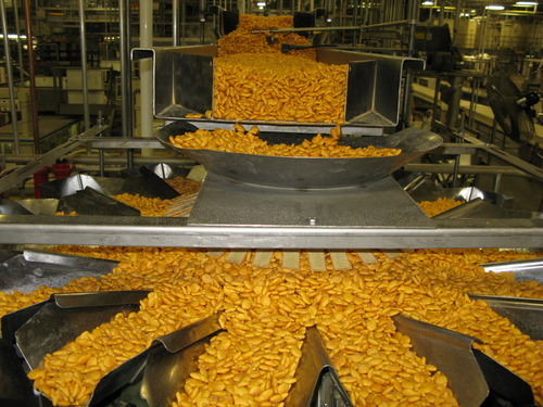 More Goldfish Mean More Jobs For Cache County The Salt Lake Tribune