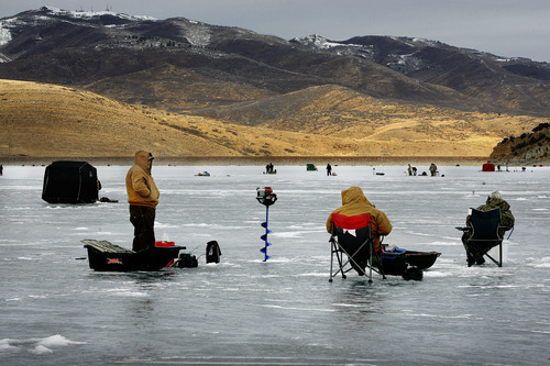 Scott Sommerdorf  |  The Salt Lake Tribune              People ice fish on Rockport Reservoir looking to hook one of more than 30 tagged trout swimming beneath the reservoir's ice Sunday. Lucky anglers who catch one and take it to the Rafter B store can claim prizes ranging from cash to gear.