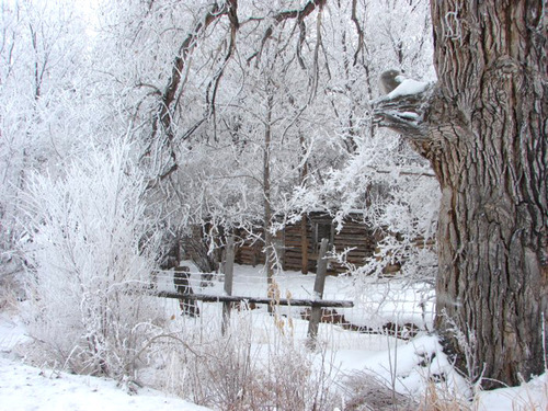An old Vernal, Utah, cabin is covered in snow.  By Carole L. Jackson