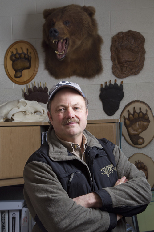 Courtesy of Mark A. Philbrick  |  BYU Brigham Young University biologist Tom Smith and colleagues have published research that shows a firearm isn't foolproof protection in a bear encounter.