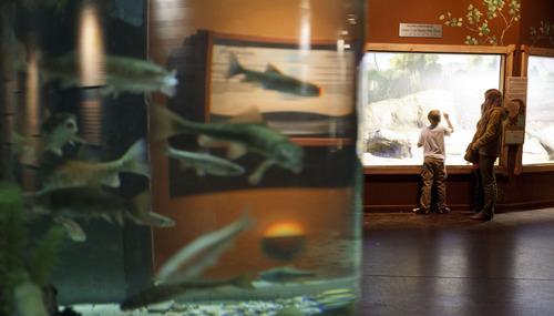 Draper OKs zone for The Living Planet Aquarium's new home ...
