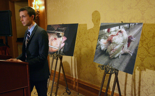 Steve Griffin  |  The Salt Lake Tribune  Nathan Runkle, founder and executive director of Mercy For Animals, stands with photographs showing animal abuse obtained by whistleblowers on factory farms in the United States. Runkle held a press conference, at the Little America hotel in Salt Lake City, Utah  Friday, March 9, 2012, to urge Utah Governor Gary Herbert to veto a bill that would outlaw the act of taking undercover video at farms, dairies, and other food production facilities.
