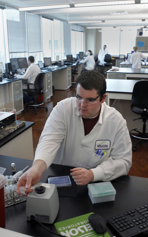 Al Hartmann  |  The Salt Lake Tribune  Lab analyst Ben Sipes works in the endotoxin lab at Nelson Laboratories in Taylorsville Wednesday. Nelson Laboratories has purchased a building next door to its existing facilities for its future expansion.