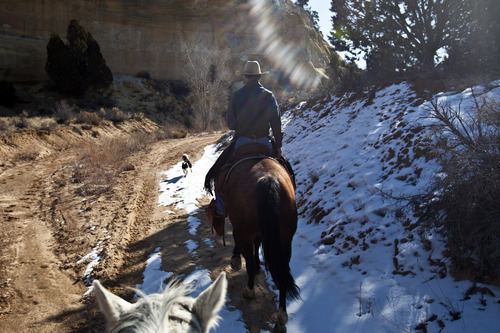 Chris Detrick     The Salt Lake Tribune Cowboy Norm Neilson, from Tropic, Utah, rides to Rock Springs Point along the west edge of the Grand Staircase-Escalante National Monument on Saturday, Feb. 18, 2012.