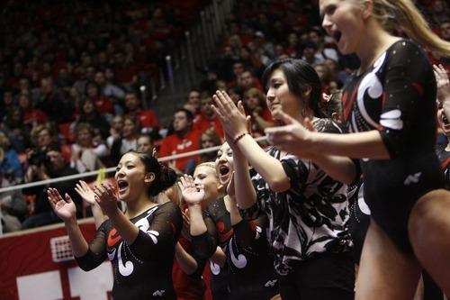 Chris Detrick  |  The Salt Lake Tribune Members of the Utah gymnastics team cheer as Mary Beth Lofgren competes on the beam during the gymnastics meet against Utah State at the Huntsman Center Friday January 13, 2012.