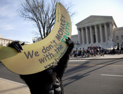 Protesters, including a man in a monkey suit, gather at the Supreme Court in Washington, Wednesday, March 28, 2012, as the court concludes three days of hearing arguments on the constitutionality of President Barack Obama's health care overhaul. (AP Photo/Carolyn Kaster)