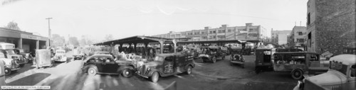 Photo courtesy Utah State Historical Society  Image shows a panoramic view of parking lot full of cars, trucks, and produce at a Salt Lake City open market on Pacific Avenue.