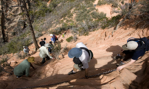 Al Hartmann  |  Tribune file photo  Hikers carefully pick their way down the Angels Landing Trail in Zion National Park in March 2009. The trail follows a steep rock spine and climbs to a magnificent view of the Virgin River and Zion Canyon below.  An anchor chain is embedded in the rock in steep places along the trail that hikers can grab onto for safety. But in recent years, six people have fallen to their deaths after losing their footing along the trail.
