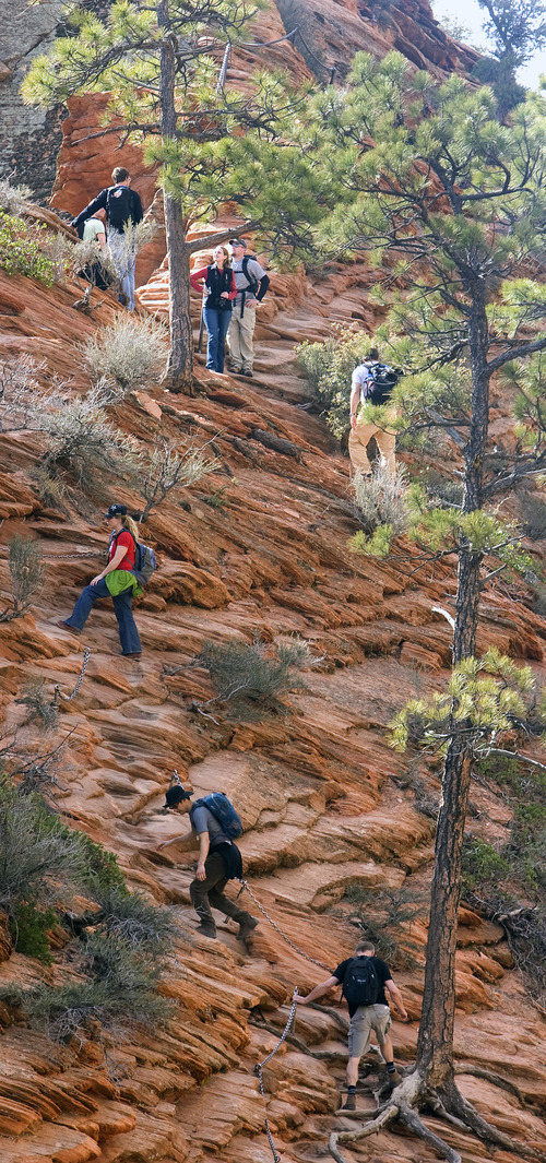 Al Hartmann  |  Tribune file photo  Hikers carefully make their way along a section of the Angels Landing Trail in Zion National Park in March 2009. The trail takes visitors up a steep rock spine that climbs to a magnificent view of the Virgin River and Zion Canyon below. An anchor chain is embedded in the rock in steep places along the trail that hikers can grab onto for safety.