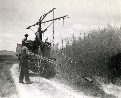 Tribune file photo  This 1943 photo from the Works Progress Administration shows men burning off noxious weeds. The location isn't known.