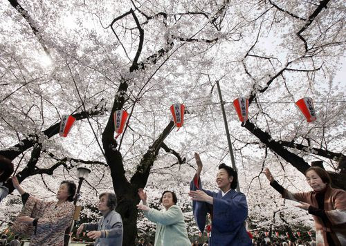 Miya Edakawa, second from right, a volunteer Japanese dance teacher, leads her dance group members during their cherry blossoms viewing party at Ueno Park in Tokyo Tuesday, April 10, 2012. Edakawa encourages the elderly to practice dancing to protect themselves from senile decay. (AP Photo/Koji Sasahara)