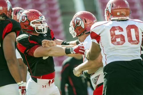 Chris Detrick  |  The Salt Lake Tribune Utah Utes offensive linesman Daniel Nielson (78) and Utah Utes linebacker Jason Whittingham (55) scuffle during a practice at Rice-Eccles Stadium Tuesday April 17, 2012.