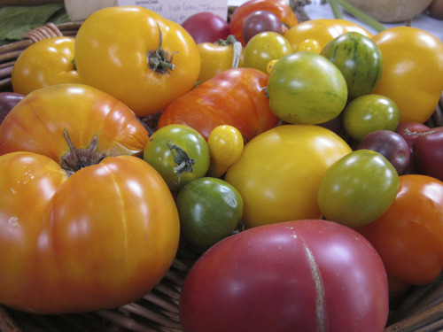 The annual plant sale, sponsored by Wasatch Community Gardens, is a good place to purchase heirloom tomato seedlings. (Courtesy Wasatch Community Gardens)