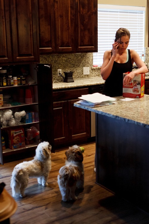 Trent Nelson  |  The Salt Lake Tribune Jen Carver's dogs Tyke, left, and Charlie Dragon Superhero, look to her for attention Wednesday, March 28, 2012 in Ogden, Utah. U.S. Army veteran Jen Carver served two tours in Iraq and is now a full time college student with an on-campus job while raising her 4-year-old son.