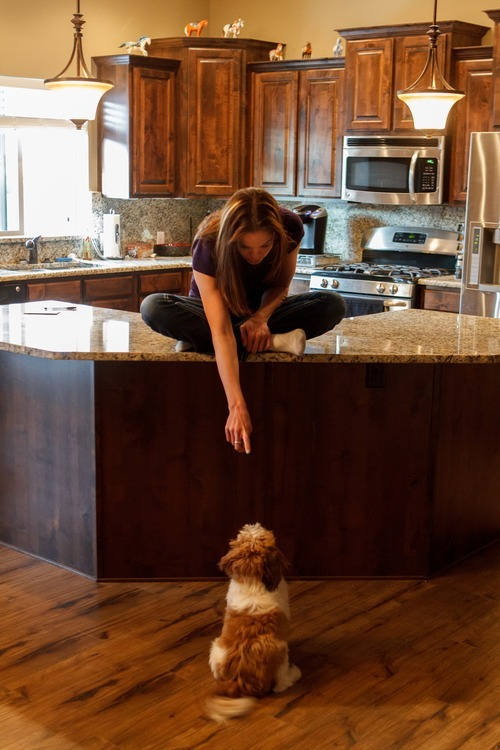 Trent Nelson  |  The Salt Lake Tribune Jen Carver points down to one of her dogs, Charlie Dragon Superhero, Thursday, March 29, 2012 in Ogden, Utah. Carver served two tours in Iraq and is now a full-time college student with an on-campus job while raising her 4-year-old son.