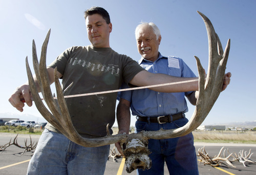 Francisco Kjolseth  |  The Salt Lake Tribune Taxidermists Tyler Anderson, left, and his father, Merlin, examine antlers on display before auction on Tuesday, May 8, 2012, by the Utah Division of Wildlife Resources at the Lee Kay Shooting Center in Salt Lake City. In addition to antlers, approximately five dozen forfeited bobcat hides and assorted cougar, fox, bear and bison hides and skulls were to be sold off.