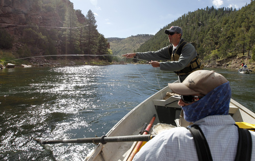 Al Hartmann  |  The Salt Lake Tribune  Flaming Gorge Resort fishing guide Brian Hoskisson watches as Dutch John resident Ryan Mosley casts to a rising fish on the Green River below Flaming Gorge Dam.