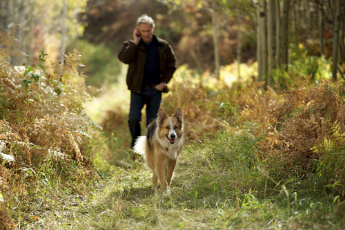 Joseph (Kevin Kline) walks Freeway, the dog that his wife has adopted, in
