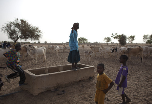 In this Tuesday, May 1, 2012 photo, a herder stands on an empty water trough as he surveys his animals, in the village of Mbelone in the Matam region of northeastern Senegal. Some residents spend hours each day pulling up water bucket by bucket from the village's 75-meter deep well, but the well isn't always able to produce enough water for the daily needs of the residents and their herds of cattle and other livestock. Since late 2011, aid groups have been sounding the alarm, warning that devastating drought has again weakened communities where children already live perilously close to the edge of malnutrition. The situation is most severe in Niger, Chad and in Mali, but this time it has also pervaded northern Senegal, the most prosperous and stable country in the Sahel. (AP Photo/Rebecca Blackwell)