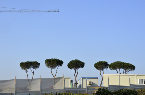 Iconic Italian evergreens peek out above the temporary privacy wall surrounding the large square outside Rome that will house four Mormon buildings, including an LDS temple. Courtesy Mike Stack