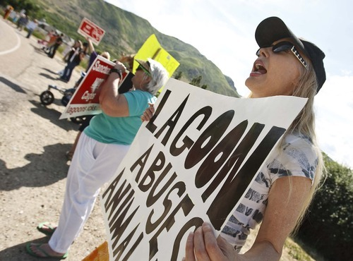 Leah Hogsten  |  The Salt Lake Tribune Janene Pearce of Salt Lake City protests the treatment of wild animals at Lagoon Amusement Park.  Protesters lined Lagoon Drive in Layton Saturday, June 2 2012 in Layton. to protest Lagoon's treatment of animals in the park as seen from the Wild Kingdom Train ride that circles a zoo where big cats, zebras, and other animals are confined to small enclosures.