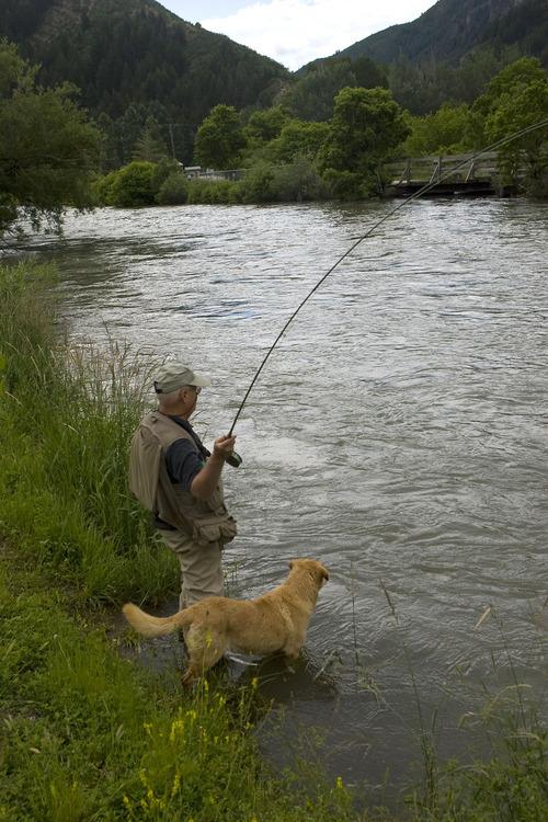 Al Hartmann   |  Tribune file photo This year's Free Fishing Day in Utah is Saturday.