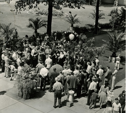 Tribune file photo  Tourists gather around a sign advertising free organ concerts on Temple Square in this undated photo.
