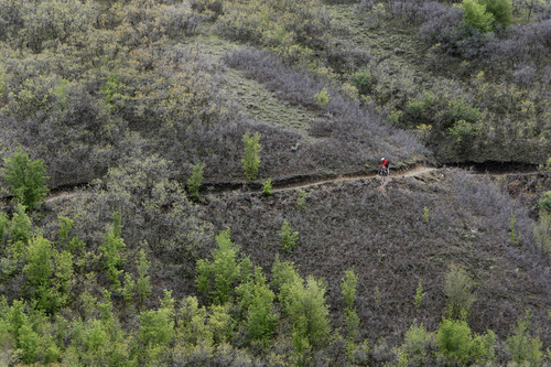 Francisco Kjolseth  |  Tribune file photo Developing more trails, such as the Little Valley Trail used by a mountain biker to ascend/descend Traverse Ridge in Sandy, is a priority for Salt Lake County residents who responded to a survey evaluating public desires for parks and recreation programs.