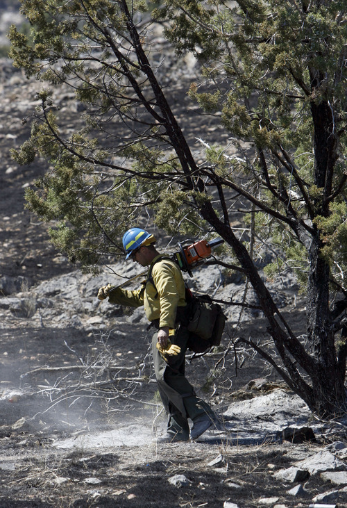 Francisco Kjolseth  |  Tribune file photo Firefighter Harrison Long checks on Juniper trees  while checking for hot spots along the nearly 1700 acres that burned south of Saratoga Springs in April. The fire was suspected to have been started by two people discharging firearms against the hillside. Two years ago, firearm use caused 20 wildfires in Utah. Last year, the number ticked up to 24. This year, with roughly three months of dry season to go, officials have already attributed 19 fires to gunfire.