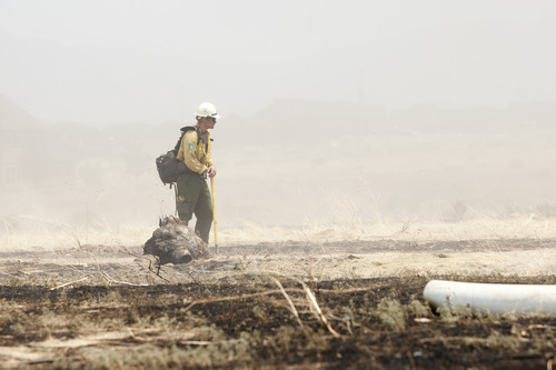 Christopher Reeves  |  Special to The Salt Lake Tribune  Kirk Dewey, of the Cedar City Hot Shots, fights the fire near Saratoga Springs on Friday, June 22, 2012.