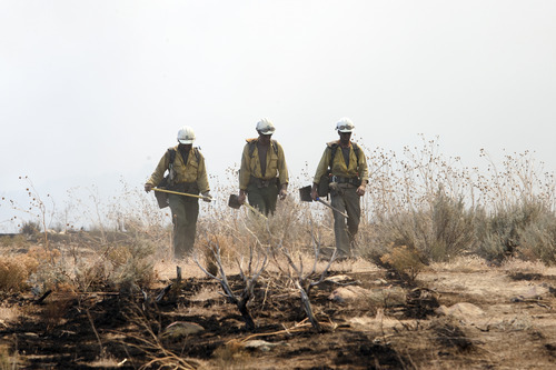 Christopher Reeves  |  Special to The Salt Lake Tribune  Members of the Cedar City Hot Shots firefighters crew fight the fire near Saratoga Springs on Friday, June 22, 2012.