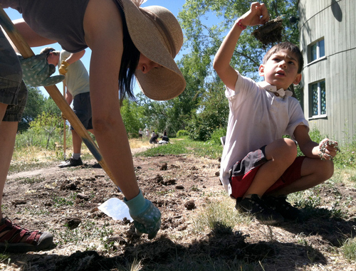 Keith Johnson |  The Salt Lake Tribune Karen Wheeler and her son Peter, 7, along with Ben Holcomb in the background, help pull noxious weeds during a Jordan River trail cleanup event at the Day Riverside Library in Salt Lake City June 23, 2012. The event, sponsored by the Children's Environmental Health & Environmental Justice Initiative in conjunction with the Department of Environmental Quality, focused on finding and removing weeds along the Jordan River trail, as well as planting trees.