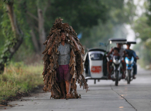 A Filipino Catholic devotee, who soaked himself in mud and wrapped in mostly banana leaves, walks around a village to beg for candles prior to attending a mass to celebrate the Feast of Saint John The Baptist at Bibiclat village, Aliaga township, Nueva Ecija province in northern Philippines, Sunday, June 24, 2012. Traditionally the Feast of St. John The Baptist is celebrated in this predominantly Roman Catholic nation in Asia by dousing unwary people with water but in this sleepy village of Bibiclat, the residents soak themselves in muddy rice fields and don banana leaves instead. The unique celebration now became a tourist attraction. (AP Photo/Bullit Marquez)