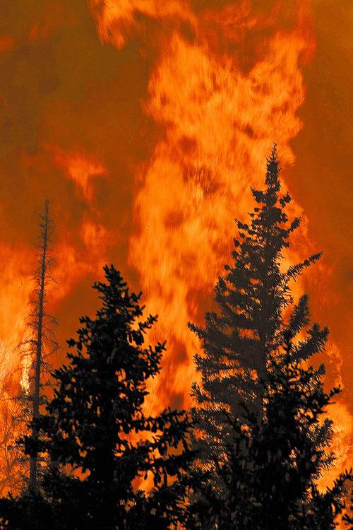 Paul Fraughton     The Salt Lake Tribune Fire rages Wednesday, June 27, 2012, in Huntington Canyon near Stuart Guard Station.