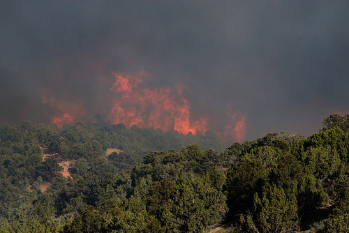Kyle Kester     Special to The Salt Lake Tribune  A wild fire burns near New Harmony, Utah, Wednesday, June 27, 2012.