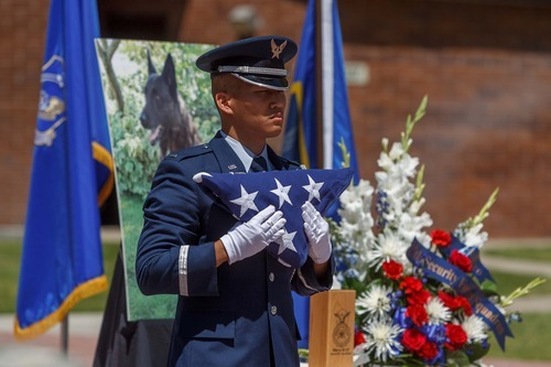 Trent Nelson  |  The Salt Lake Tribune Lt. Danny Chung of the Hill Air Force Base Honor Guard stands during a flag ceremony in memory of Marco, a military working dog, at a retirement ceremony for four military working dogs held by the 75th Air Base Wing Security Forces at Hill Air Force Base on Friday, June 29, 2012.
