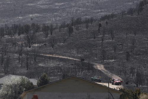 Scott Sommerdorf  |  The Salt Lake Tribune              Torched hillsides just off Rosecrest Drive in Herriman, Sunday, July 1, 2012.