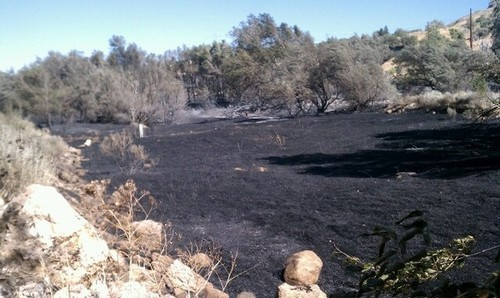 Cimaron Neugebauer   The Salt Lake Tribune  Firefighters quickly contained a 12-acre brush fire that started Tuesday morning in the mouth of Ogden Canyon.