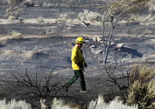 Al Hartmann     The Salt Lake Tribune Ogden City fire fighter walks through burned field at the mouth of Ogden Canyon Tuesday morning July 3.