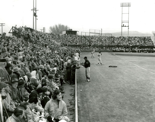 Tribune file photo A player signs autographs for fans at Derk's Field is seen in this undated photo.