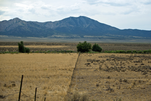 Chris Detrick  |  The Salt Lake Tribune Parched land illustrates the effects of the drought in the southern part of the Rush Valley in Tooele County.