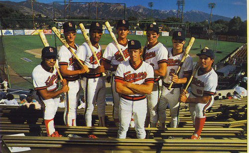 The 1987 Salt Lake Trappers baseball team won 29 games in a row.