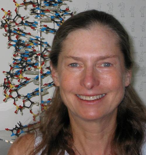 U. biochemist Brenda Bass.  Courtesy University of Utah