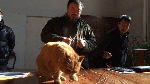 Chinese artist and activist Ai Weiwei watches as one of his studio's 40 cats adds a few touches to his artwork, in a scene from the documentary