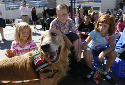 Francisco Kjolseth  |  The Salt Lake Tribune Carter Veldevere, center, alongside his sisters Madison, 8, left, and Jordyn, 9, meets Barnsley, a service dog, with other 6th graders from Hayden Peak Elementary. Carter, 10, who has spinal muscular atrophy, received a sponsorship from Milk-Bone and Smith's Food & Drug, and will be matched with a free service dog some time in the next year.