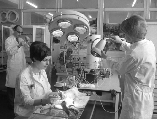 FILE - An April 21, 1969 photo from files showing a view of a laboratory of the pharmaceutical company