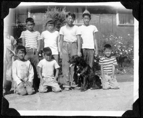 Japanese American boys living in the Topaz internment camp are shown here with a dog, a rare sight in the camp as most families were forced to leave their pets behind. Salt Lake City resident Ted Nagatanis is at the bottom left. Courtesy Special Collections, J. Willard Marriott Library, University of Utah